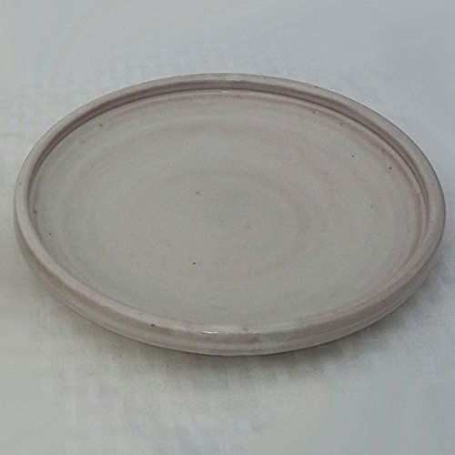 White Rustic Clay Plate - 9.5 inches (Mexican Clay Cookware compare prices)
