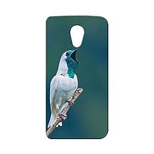 BLUEDIO Designer Printed Back case cover for Motorola Moto G2 (2nd Generation) - G4071