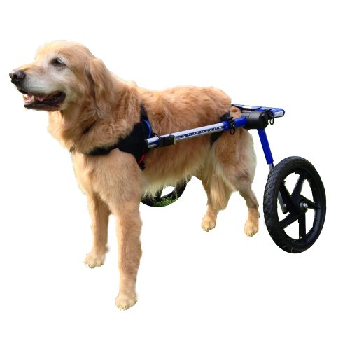 best friend mobility dog wheelchair instructions
