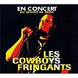 En Concert Au Zénith De Paris