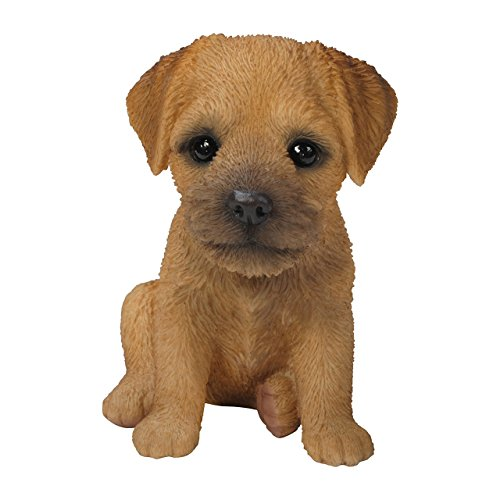 pet-pals-decoration-border-terrier