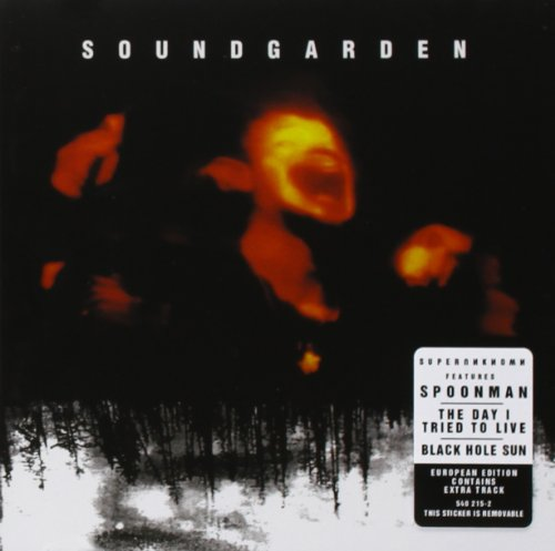Superunknown