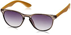 Killer Round Sunglasses (Grey and Brown) (KL3029BFO GREY BRN 50)