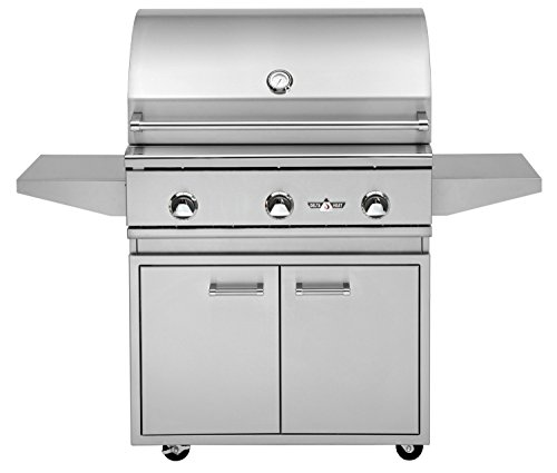 Delta Heat 32 Inch Natural Gas Grill On Double Door Cabinet