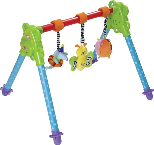 Taf-Toys-Junior-Gym