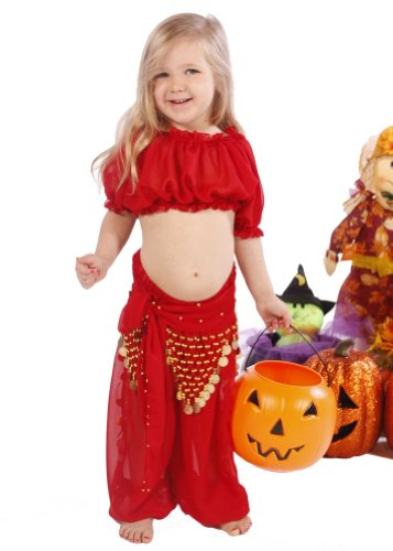 Belly Dance Kid's Chiffon Top, Pants, & Hip Scarf Halloween Costume Set