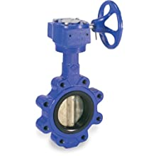 Sharpe Valves 17 Series Ductile Iron Butterfly Valve, Lug Style, Stainless Steel 316 Disc, Buna-N Seat, Gear Operator