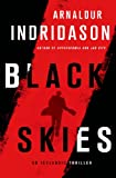 img - for Black Skies: An Inspector Erlendur Novel (An Inspector Erlendur Series) book / textbook / text book