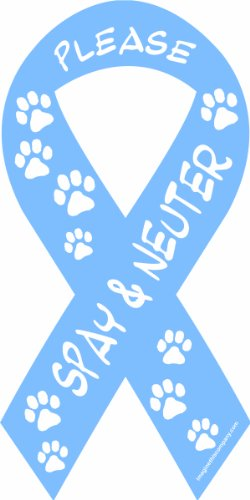 Imagine This 8-Inch by 4-Inch Car Magnet Social Issues Ribbon, Please Spay and Neuter, Blue