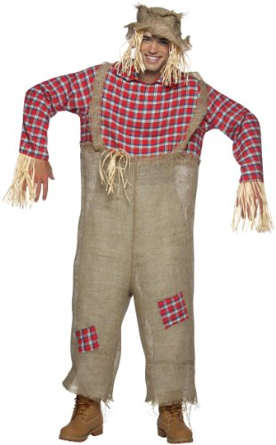 Rasta Imposta Mens Mr. Scarecrow Adult Costume