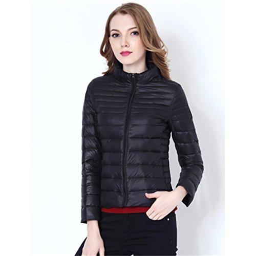 Automne-et-hiver-lger-court-paragraphe-Down-veste-femmes-se-dressent-Collar-temprament-Slim-grande-taille-vers-le-bas-veste-chaude