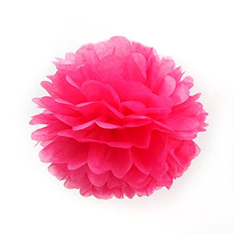 5Pcs 12 Inch Hot Pink Tissue Paper Pom Poms Wedding Party Decor Craft Paper Flowers For Party Wedding front-572699