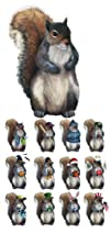 Seasonal Squirrel Dress-Up Magnet Set By Collections Etc
