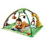 Dynamic Fisher-Price Rainforest Melodies and Lights Deluxe Gym - Cleva Edition ChildSAFE Door Stopz Bundle