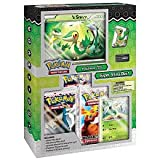 Pokemon Black and White Super Snivy Trading Card Game Character Box