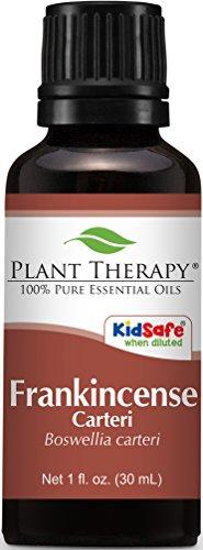 Frankincense carteri Essential Oil. 30 ml (1 oz). 100% Pure, Undiluted, Therapeutic Grade