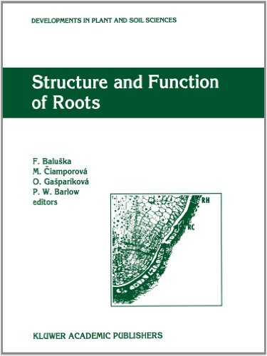 Structure And Function Of Roots: Proceedings Of The Fourth International Symposium On Structure And Function Of Roots, June 20-26, 1993, Stará Lesná, Slovakia (Developments In Plant And Soil Sciences)