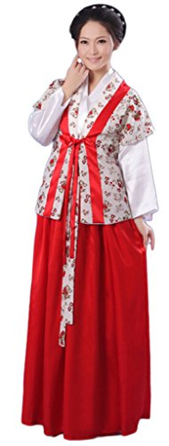 Chinese Style Stage Costume Women's Maid Dress Halloween Cosplay HanFu