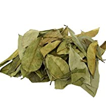 Soursop Leaves Tea