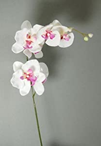 Artificial Silk Stem of White and Pink Orchid (A)