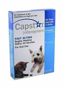 Amazon Com Capstar Pet Flea Medicine Pet Flea Drops