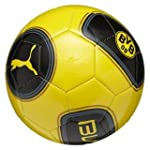 PUMA Ball BVB Evo Speed 5.2, blazing...