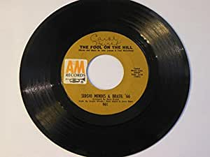 fool on the hill 45 rpm single