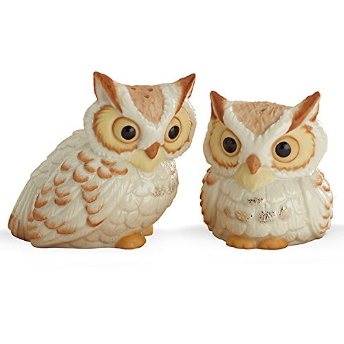 Lenox fine china wise old owl collectible salt and pepper shaker set 2 5 tall ivory home garden - Owl salt and pepper grinders ...