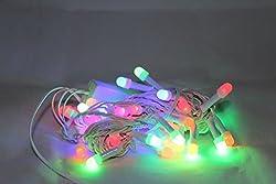 Atnep RGB LED Rice Lights String LADI Series Festival Decoration Navratri Diwali Christmas (40 LEDs Bulb) 40LW | Home Decor Party Event Lighting Decoration