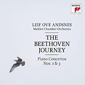 Concerto for Piano and Orchestra No. 1 in C Major, Op. 15: III. Rondo - Allegro