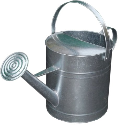 9L / 2 Gallon Capacity Galvanised Silver Zinc Watering Can with Rose LTR Litre