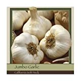 Honeyman Farms Garlic California Softneck - 3 Pack