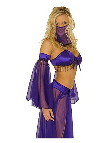 [Sexy Five Piece Belly Dancer Costume] (Sexy Belly Dancer Costumes)