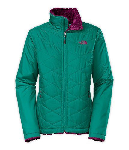 The North Face Mossbud Swirl Jacket- Fanfare Green/Parlour Purple (Medium)