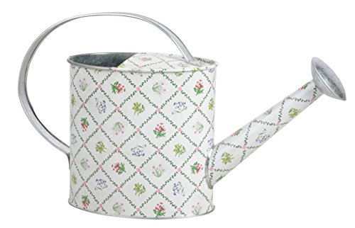 Esschert Design Botanicae Indoor Watering Can (English Watering Can compare prices)