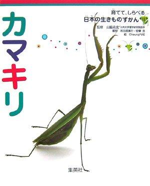 カマキリ 育てて、しらべる 日本の生きものずかん 13 (育てて、しらべる 日本の生きものずかん) (育てて、しらべる日本の生きものずかん)