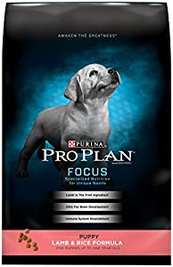 Purina Pro Plan Dry Dog Food, Focus, Puppy Lamb & Rice Formula, 18-Pound Bag, Pack of 1