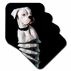 3drose White Boxer Uncropped Ears Ceramic Tile Coaster, Set of 4