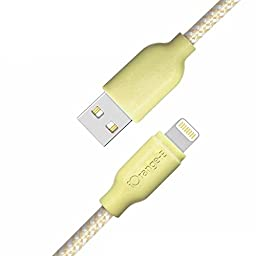 iPhone 7 Cable, iOrange-E 10Ft/3M Lightning Cable with The Strongest Kevlar Fiber for iPhone 7 6 6S Plus 5S 5C 5, iPad Air, iPad 4th Generation, iPad Mini 4, iPad Pro, iPod Touch 5th Gen, Gold