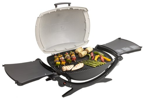 Best Buy Weber Q 200 Portable Propane Grill, Silver Series