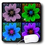Sandy Mertens Botanical Garden - Cosmos Flower Collage - Mouse Pads ~ 3dRose