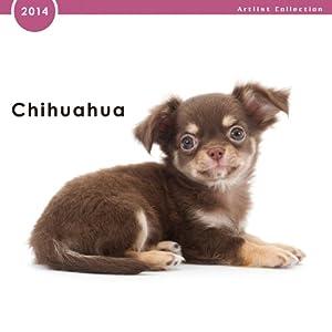 アーリスト THE DOG ミニカレンダー2014 チワワ ノーマルレンズシリーズ [401562]