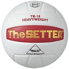 Buy Tachikara TB-18 The Setter Training Volleyball by Tachikara