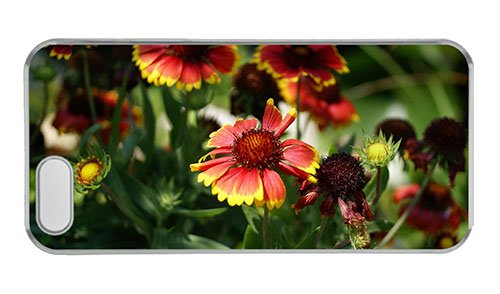 Customized Iphone 5 On Sale Cover Blanket Flowers Pc Transparent For Apple Iphone 5/5S front-903727