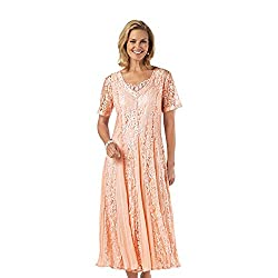 Old Pueblo Traders Women's Lace Dress With Godets from Signature Collection