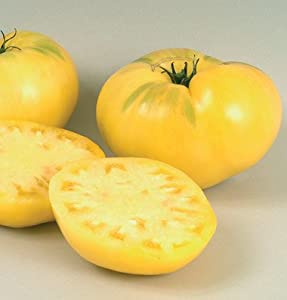 Tomato Great White 100 Organic Heirloom Seeds by David's Garden Seeds