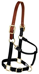 Weaver Leather 35-6025-BK Nylon Breakaway Halter for Average Horse, 1-Inch, Black