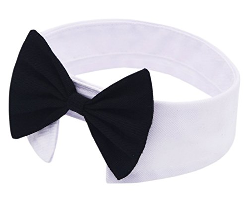 Amajiji Formal Dog Cat Pet Bow Tie Neck Tie (White) (Neck Ties For Cats compare prices)