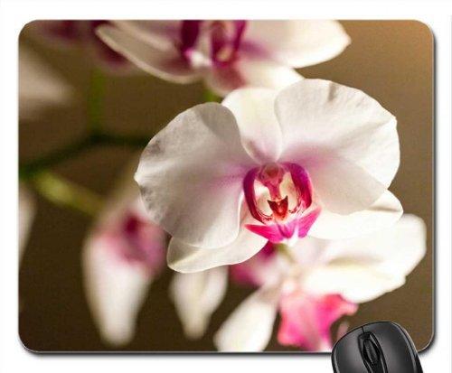 Orchids for Carmen Mouse Pad, Mousepad (Flowers Mouse Pad)