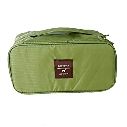 Urban Living Multiutility Undergarment Pouch For Easy Traveling(25.4X11.4X12.7 Cm,Green)